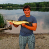 Someone else pike caught