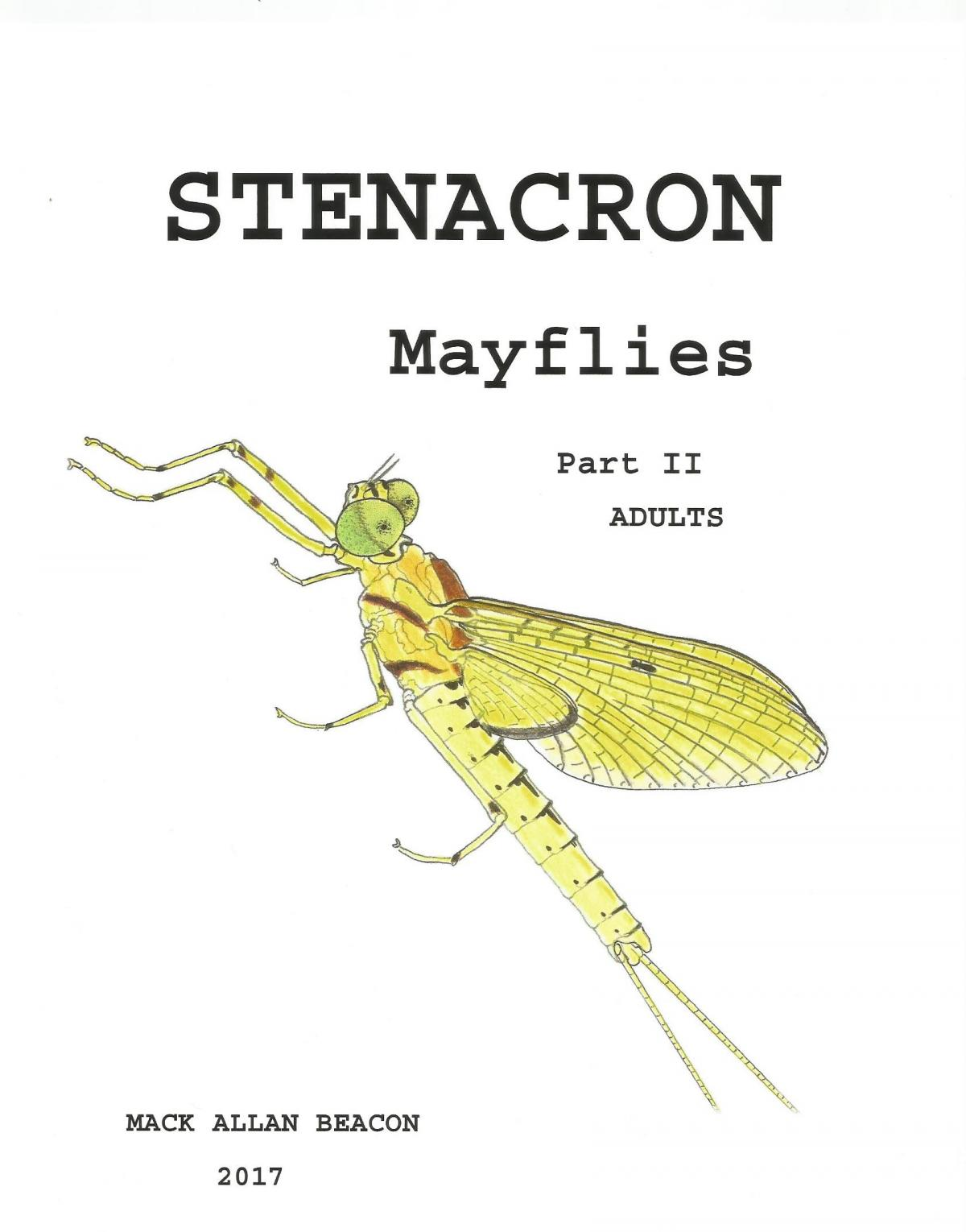 Insect identification Mayflies - Fly Fishing - Ontario